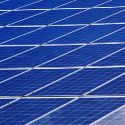Sostenibilità - Bagno Teresa - stabilimento balneare a Viareggio